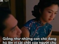 chinese porn : hot asian sex